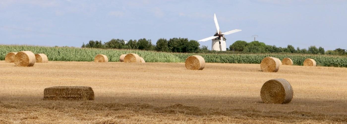 La campagne en Vendée